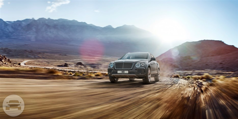 BENTAYGA Sedan  / New Territories, Hong Kong   / Hourly HKD 0.00