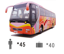 45-Passenger Man Bus Coach Bus  / Kowloon, Hong Kong   / Hourly HKD 1,540.00  / Airport Transfer HKD 2,500.00